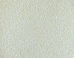 Protease Animal Feed Additive