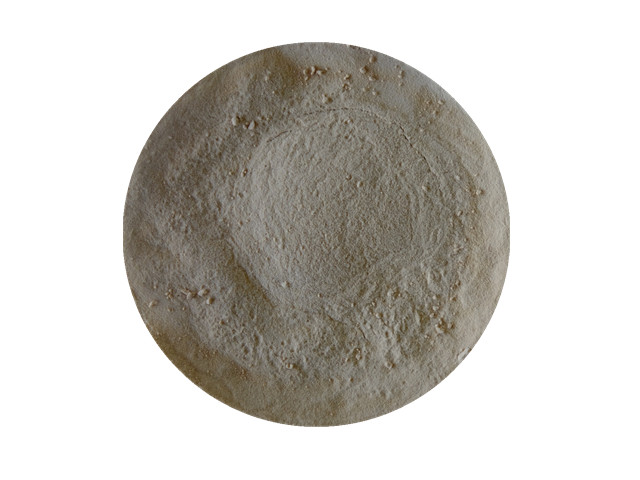 Enzyme Additive Silage - Animal Digestive Enzymes