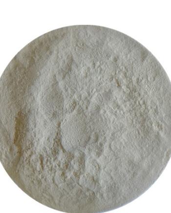 Xylanase Enzyme Animal Nutrition
