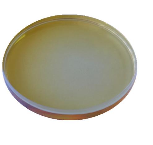 Chill-haze Prevention In Brewing - Enzima proteazei CAS 232-642-4