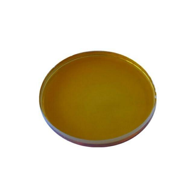 Termostabilna alfa-amilaza za hidrolizo škroba v industriji etanola