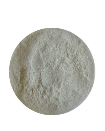 Alpha Galactosidase Enzyme CAS 9025-35-8