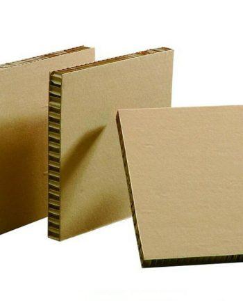 Enzym pro zpracování papíru ke snížení obsahu ligninu