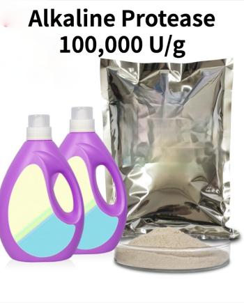 Alkaline Protease 100
