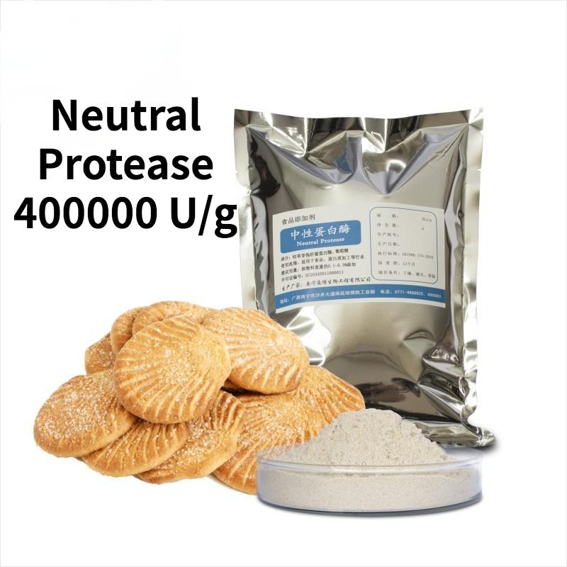 Neutral Protease Bacillus Subtilis Protease 400