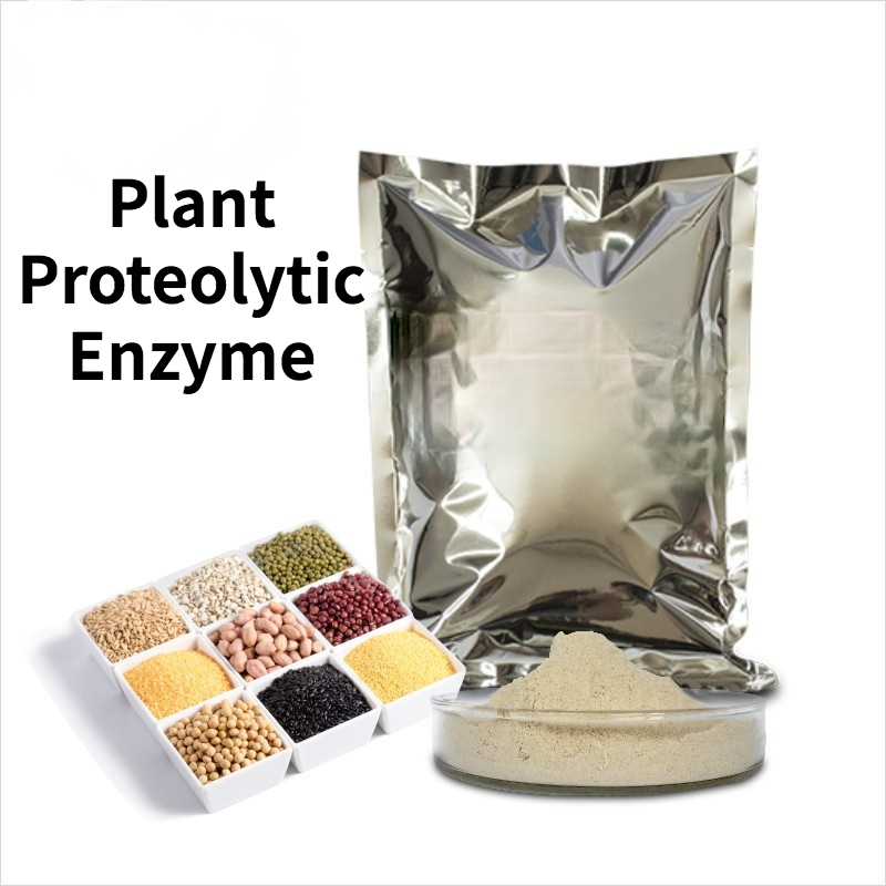 Plant Proteolytic Enzyme Wheat Gluten Flour Special Enzyme for Corn and Rice Hydrolysis